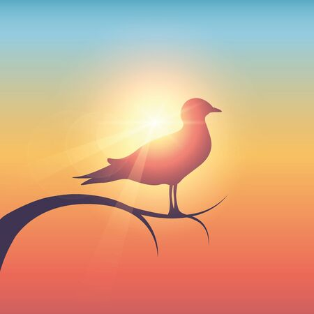 wildlife gull bird in sunny colorful sky vector illustration EPS10