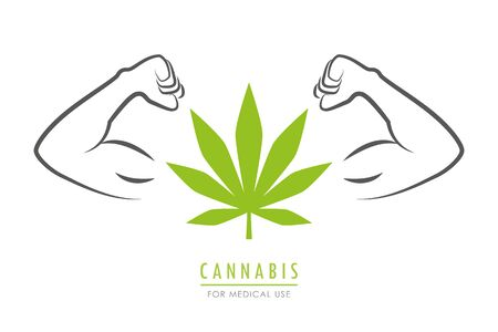 strong cannabis leaf with muscular arms vector illustration EPS10 Ilustração