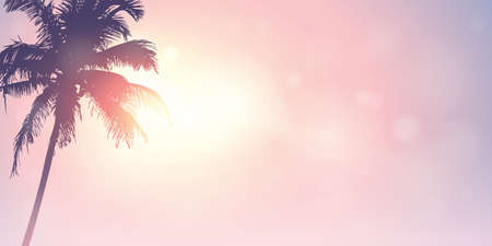 palm trees silhouette on a sunny day summer holiday design vector illustration EPS10 Illustration