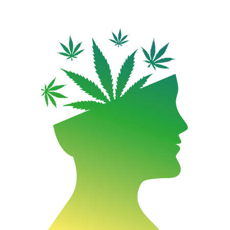 cannabis leaves in mans head silhouette vector illustration EPS10