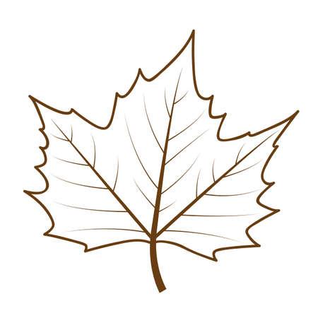 isolated autumn leaf outline drawing vector illustration EPS10 Ilustração