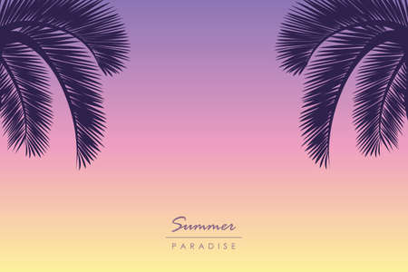 summer sunset background with palm trees