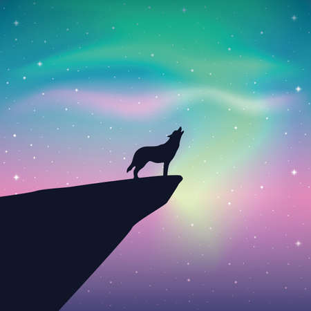 howling wolf looks in the colorful starry sky with aurora borealis vector illustration EPS10