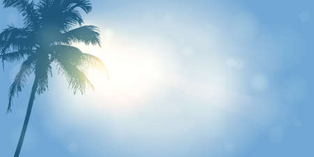 palm trees silhouette on a sunny day summer holiday design vector illustration