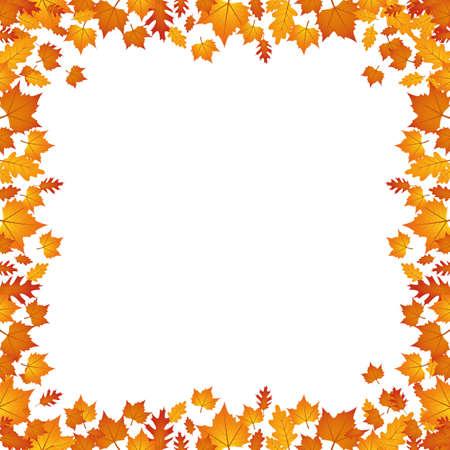 autumn leaves border isolated on white background vector illustration EPS10