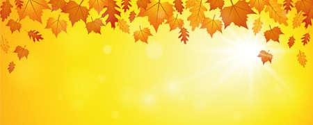 falling autumn leaves on sunny sky background vector illustration EPS10 Stock Illustratie