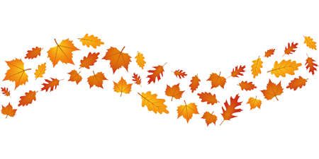 set of autumn leaves in the wind isolated on white background vector illustration EPS10 Stock Illustratie