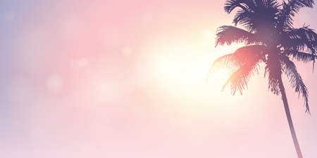 palm trees silhouette on a sunny day summer holiday design vector illustration EPS10 Ilustrace