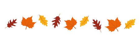 set of autumn leaves in the wind on white background