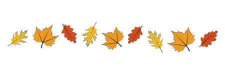 set of autumn leaves outline on white background vector illustration EPS10