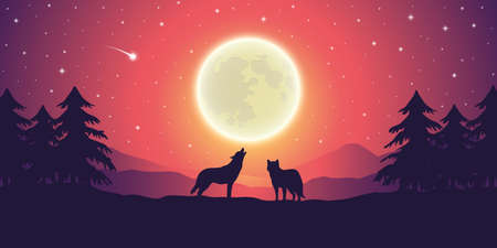 two wolves at purple mountain landscape with full moon and starry sky vector illustration EPS10
