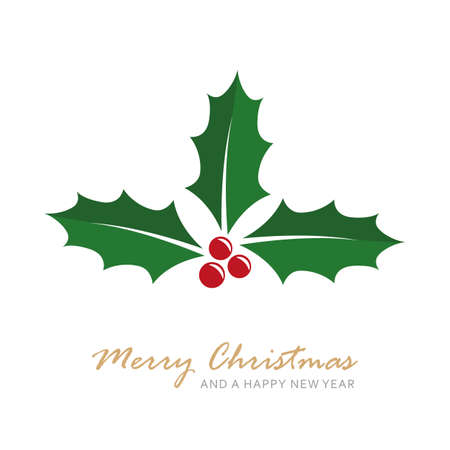 christmas holly berry isoladet on white vector illustration EPS10