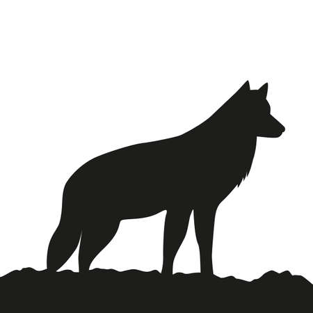 younger wolf side view silhouette on white background vector illustration