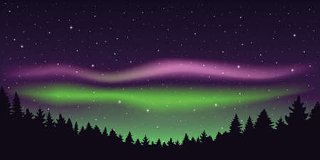 aurora borealis beautiful polar lights in starry sky in forest vector illustration