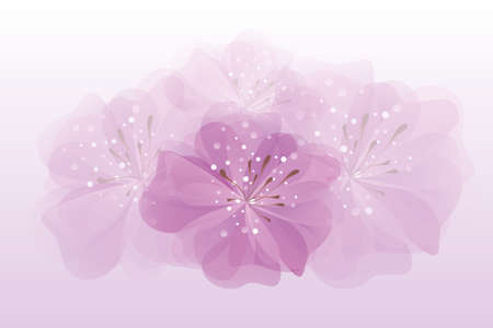 pink bright lilly flower background vector illustration Иллюстрация