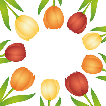 colorful tulips circle border isolated on white vector illustration Иллюстрация