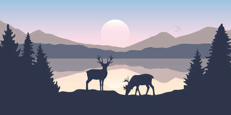 two moose in wildlife at beautiful lake in the mountains Vettoriali
