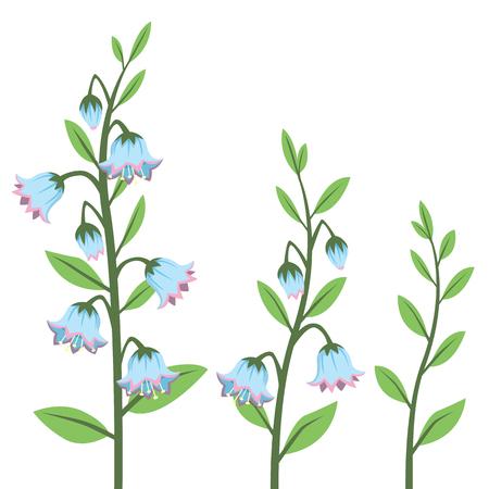 Cartoon Style Bluebell Flower Design Elements Set Isolated on White