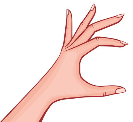 Mano della donna elegante che tiene qualcosa piccole dita stese con l'illustrazione descritta vettore di stile del manicure francese retro isolata su bianco Archivio Fotografico - 94767650