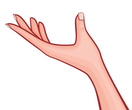 Palma stesa della mano della donna elegante su con l'illustrazione descritta vettore di stile del manicure francese retro isolata su bianco Archivio Fotografico - 94767651