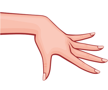 Elegant Woman Hand with Spread out Fingers with French Manicure Retro Style Vector Outlined Illustration Isolated on White