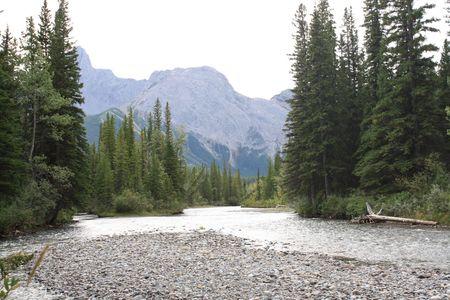 山の川 写真素材