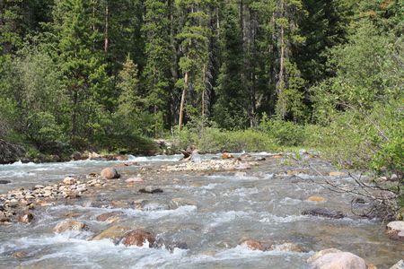 mountain river Stock fotó - 5595178