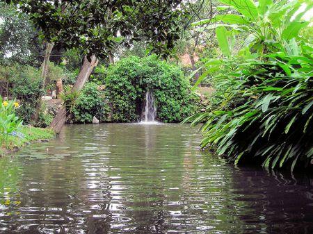 滝のある池