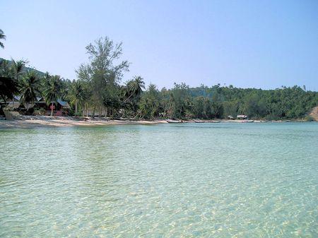 熱帯のビーチ