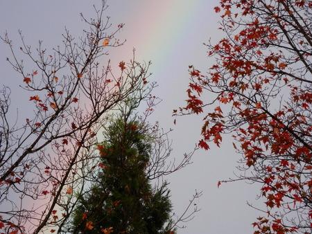 faint rainbow with autumn trees