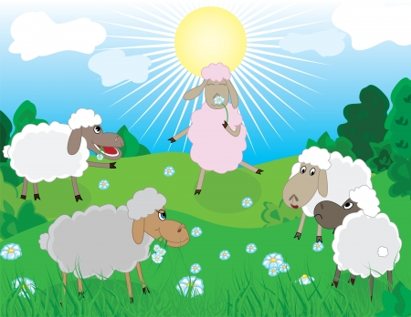 baa: Sheeps in pasture with romantic sheep smelling the flower