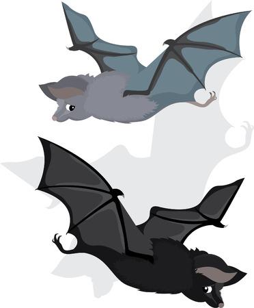 Bat in two variants,  cartoon Vector