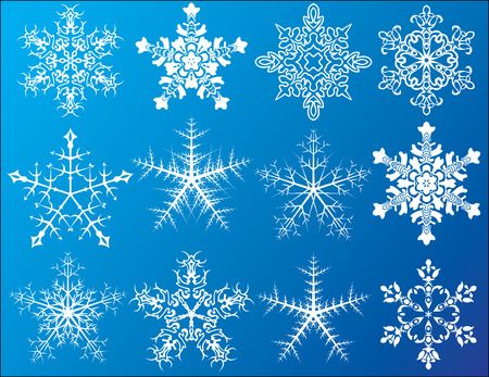 Snowflakes icons set Vector