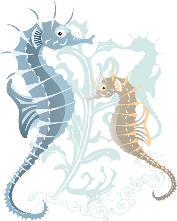 seahorse: sea-hose in the underwater  Illustration
