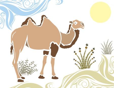 sand dune: Camel in desert stencil