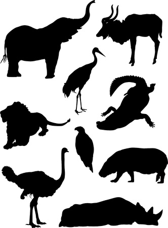 Zoo wild animals silhouette set Vector