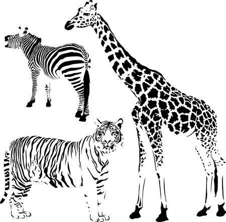 Afrikaanse gestreepte en vlekkerige dieren, giraffen, zebra's en tijger stencil Stock Illustratie