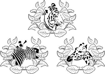 animals stencil set, zebra, tiger and giraffe in wreaths Stock Vector - 15034591