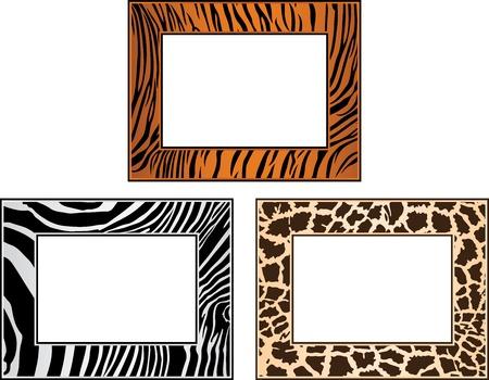 canvas print: colecci�n de �frica marco, tigre, cebra y jirafa