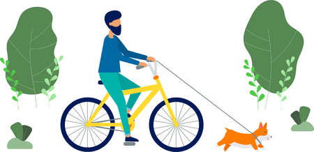The man rides a bicycle, hes walking the dog of the breed Welsh Corgi. Spring trees and plants. Cute flat style vector illustration.