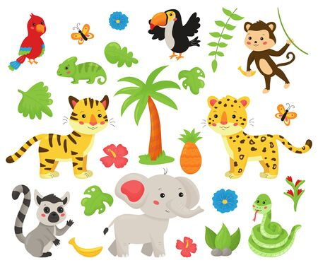 Set of jungle animals and tropical plants. Cute cartoon kawaii characters: wild cats, snake, elephant, tropical birds, lemur. Isolated on white background.