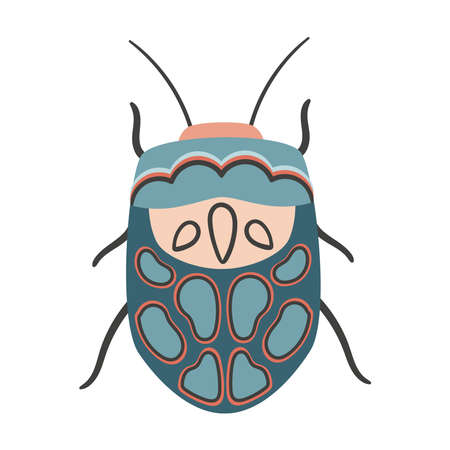 Doodle Picasso bug. Hand drawn stylized Sphaerocoris annulus. Vector Zulu hud bug insects for design. 일러스트
