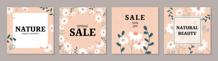 Square art templates with daisy flowers and abstract floral elements. Ideal for social media posts, banner, internet ads design. Organic nature cosmetics vector backgrounds. 일러스트