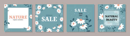 Square art templates with daisy flowers. Illustration for social media posts, banner, internet ads design. Organic nature cosmetics green backgrounds. Hand drawn doodle plants.