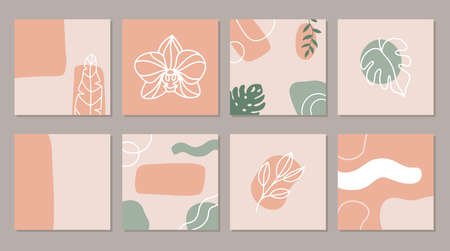 Abstract square art templates with tropical flowers. Illustration for social media posts, banner, internet ads design. Hand drawn exotic leaves and flowers.