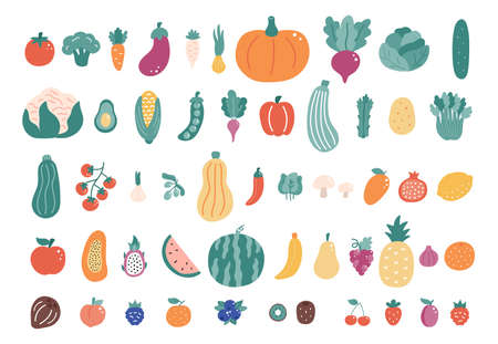 Big set of vegetables and fruits on white background. Hand drawn doodle food illustration. Flat style vector collection. 일러스트