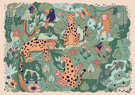 Doodle jungle background with hand drawn leopard, snake, monkey, parrots, toucan, humminbird, chameleon and butterfly. Cartoon animals. Vector illustration for posters and greeting cards. Illustration