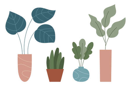 Hand drawn doodle houseplants in pots and vases. Set collection. Trendy hugge style. Plants in flower pots. Home decor. Vector illustration. Illustration