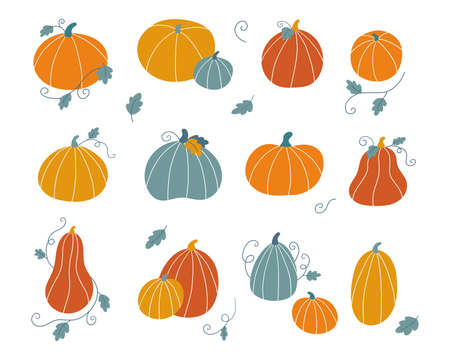 Hand drawn doodle pumpkins with leaves. Set collection for Thankful day or Halloween celebration. Autumn vector illustration. Flat style vegetables.