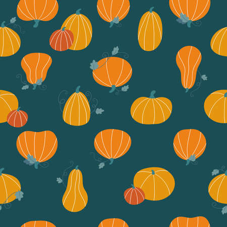 Seamless pattern with hand drawn orange, yellow and red pumpkins on dark green background. Autumn doodle vegetables for Thankful day or Halloween celebration. Vector illustration.